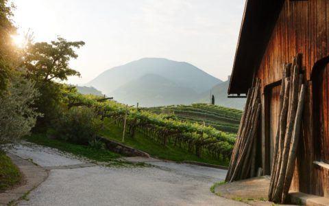 Barn with Grafenleiten hill
