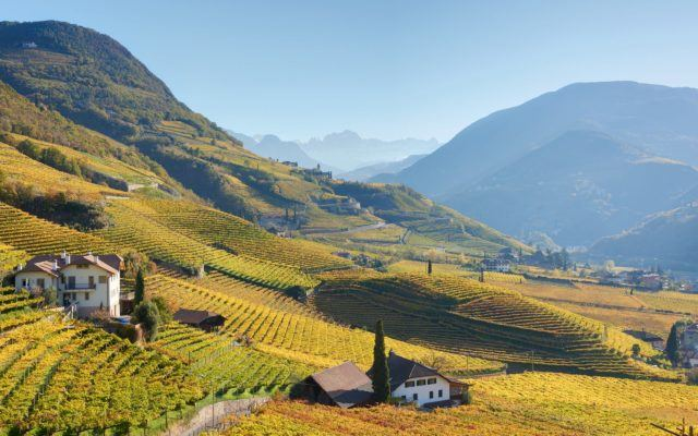 Obermoser-Estate-on-the-left-in-autumn-with-Rosengarten-mountain-group